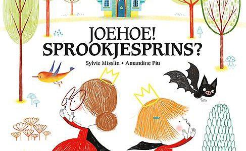 Annemie las Joehoe sprookjesprins van Sylvie Misslin