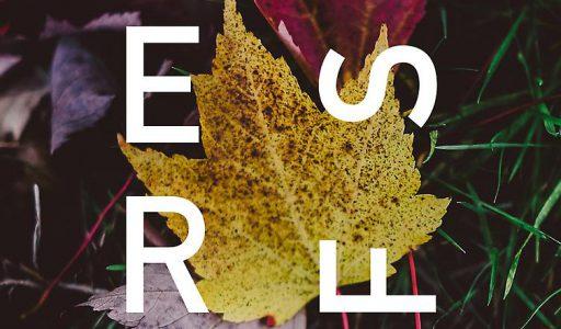 Pascal las Herfst van Ali Smith