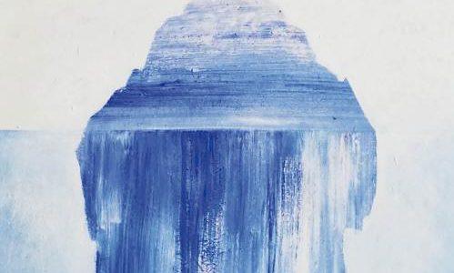 Annemie las De wetten van water van Cynan Jones